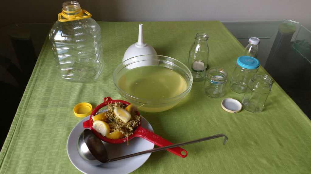 succo di sambuco per dimagrire