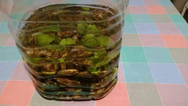 preparazione del liquore alle noci