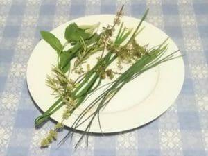 selezione di erbe aromatiche fresche