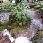 cascata naturale